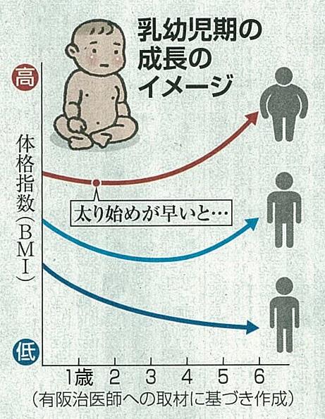 幼児 bmi